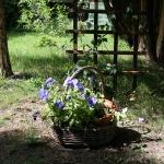 garden party 014